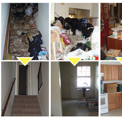 hoarding_services
